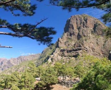 Landausflüge auf La Palma: Natur pur!