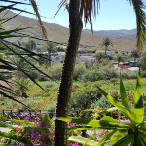 Landausflug auf Fuerteventura: Das wunderschöne Inland von Fuerteventura